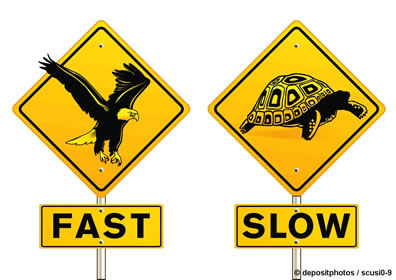 Slow & Fast